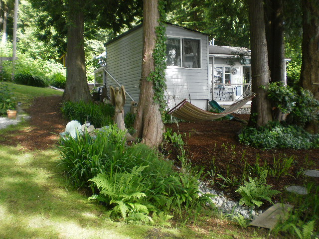 Amazing Dogwood Cottage #5: Part Of Yard Area Facing Cottage And Hammock